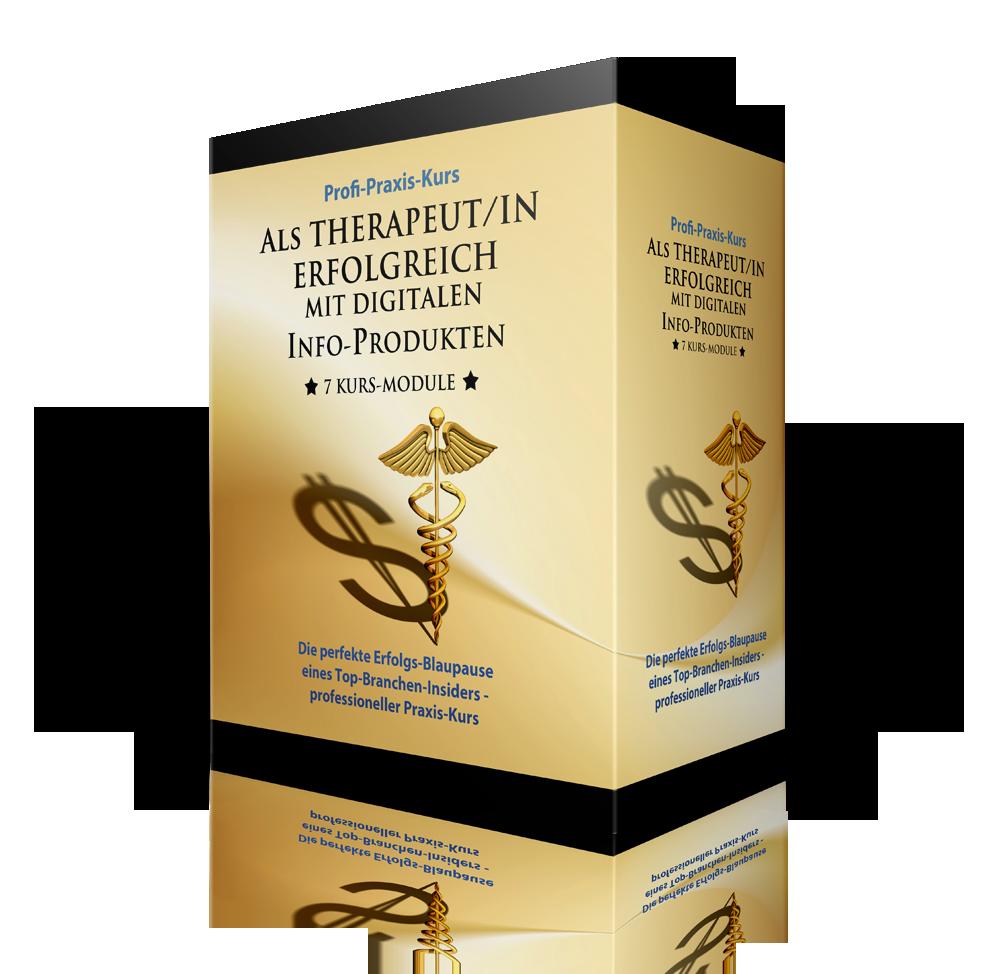 Profi-Praxis-Kurs für Therapeuten