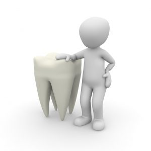 Regenerierter Zahn